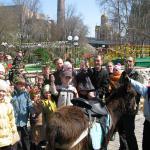 На Вербное воскресенье ученики детской воскресной школы не только принимают участие в богослужении, но и катаются на ослике из заводского зоопарка